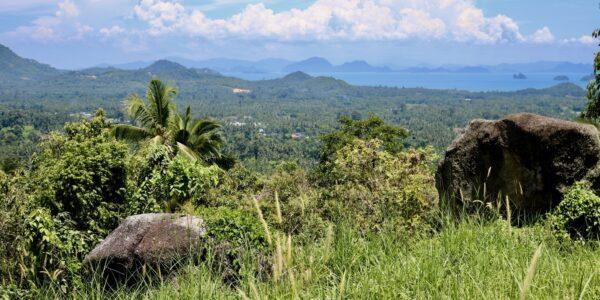 Land Nathon Koh Samui for sale