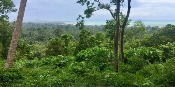 Property sea view Nathon Koh Samui