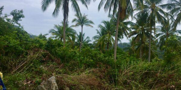 Sea View Property Na Mueang Koh Samui