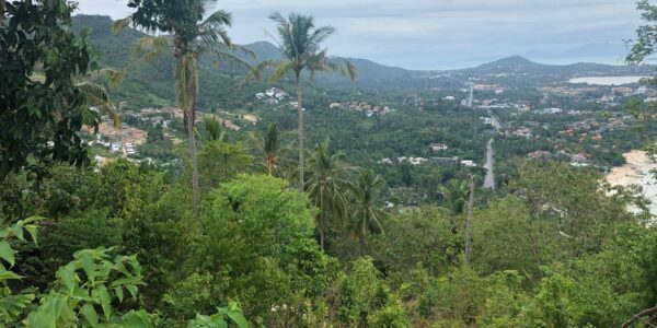1.5 Rai Chaweng Noi Koh Samui Land For Sale