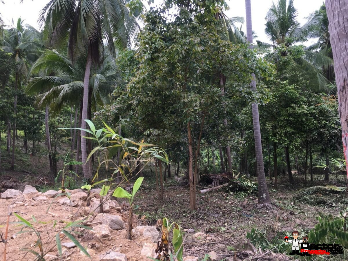 1.75 Rai Property - Chaweng Noi, Koh Samui - For Sale