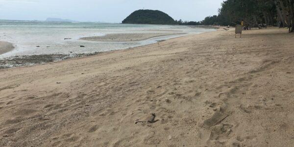 Amazing Beachfront Land 27 Rai Bang Makham For Sale