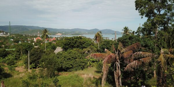 1 Rai Land in 2 Plots with Sea Views - Plai Laem, Koh Samui - For Sale / Real Estate Doctor Property