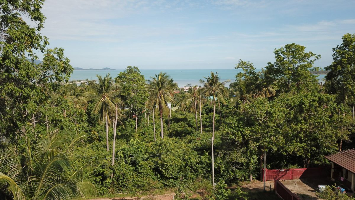 1 Rai Land in 2 Plots with Sea Views - Plai Laem, Koh Samui - For Sale