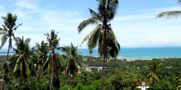 0.57 Rai Sea View Land - Nathon, Koh Samui - For Sale