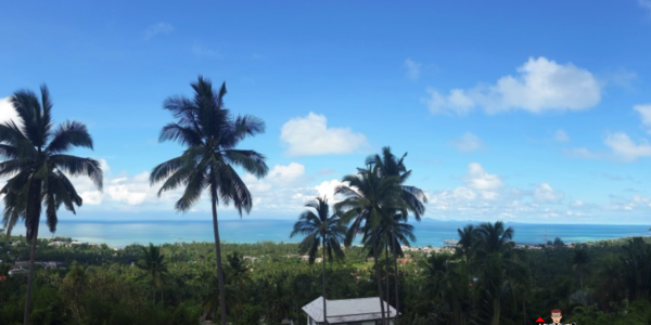 1 Rai Sea View Land - Nathon, Koh Samui - For Sale - Doctor Property Real Estate