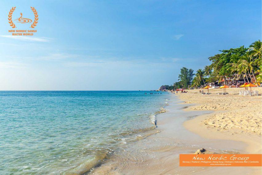Lamai Beach - Lamai Waterworld Apartments - Lamai, Koh Samui - For Sale - Doctor Property Real Estate
