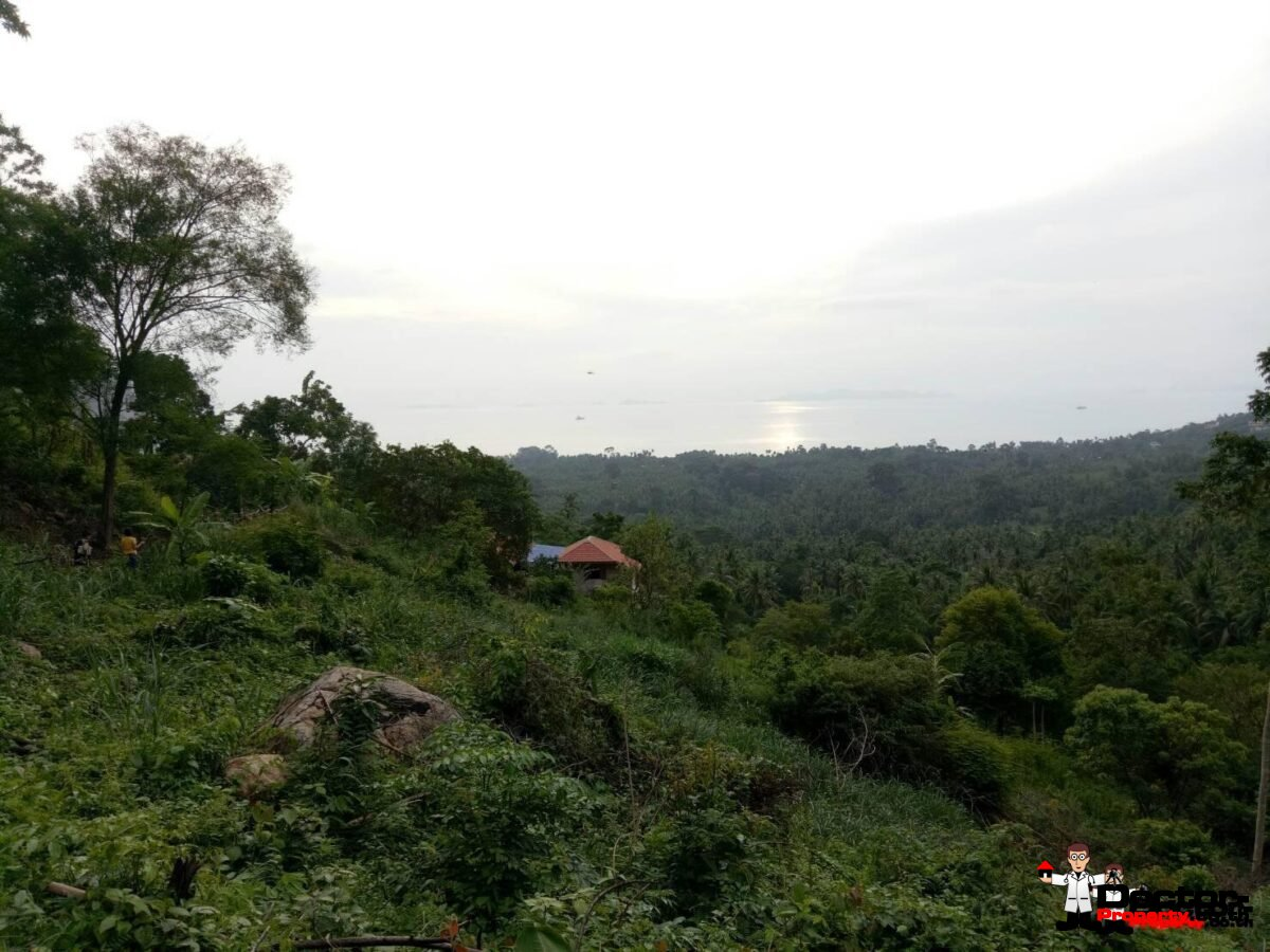 13 rai of Land, For Sale - Bang Makham, Koh Samui - For Sale