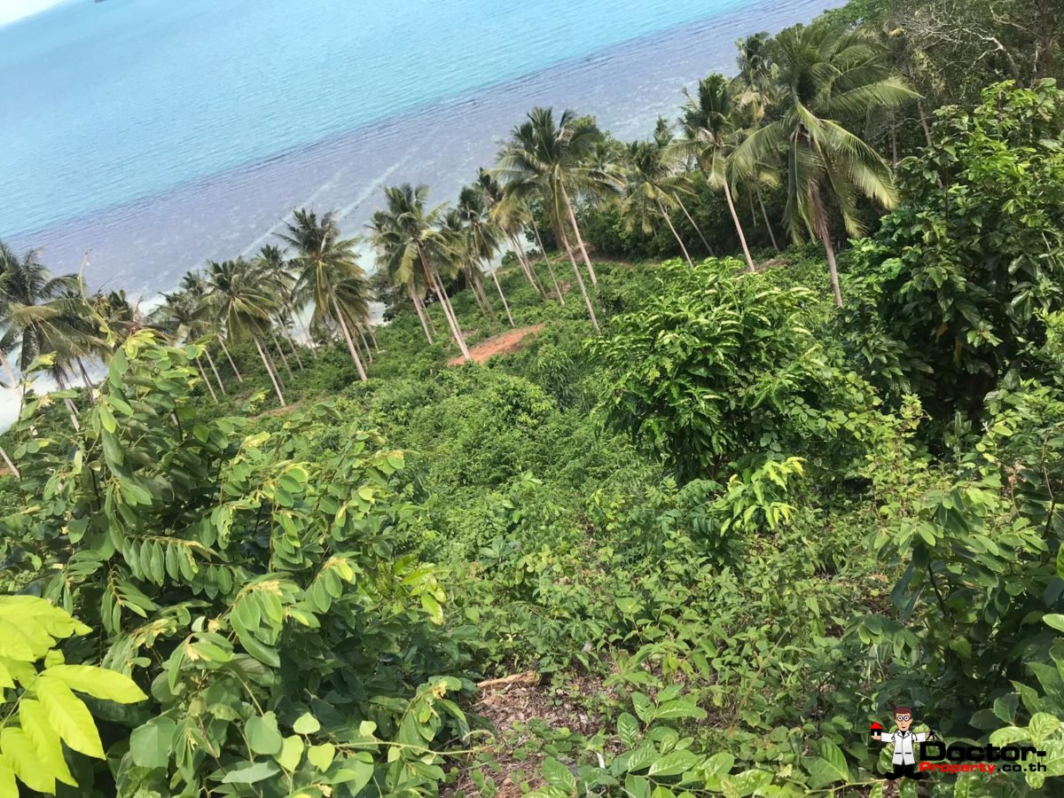 4 Rai Beachfront Land - Taling Ngam - Koh Samui - for sale 5