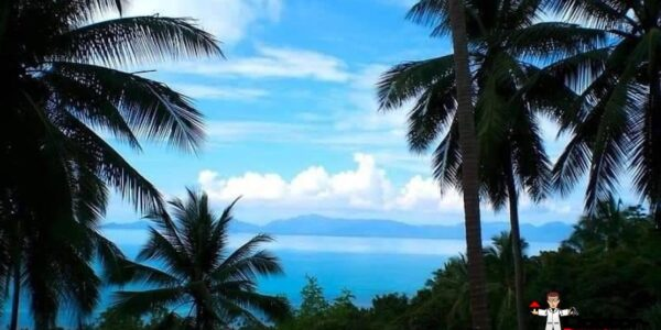 7 Rai Sea View Land - Bang Por - Koh Samui - for sale 3
