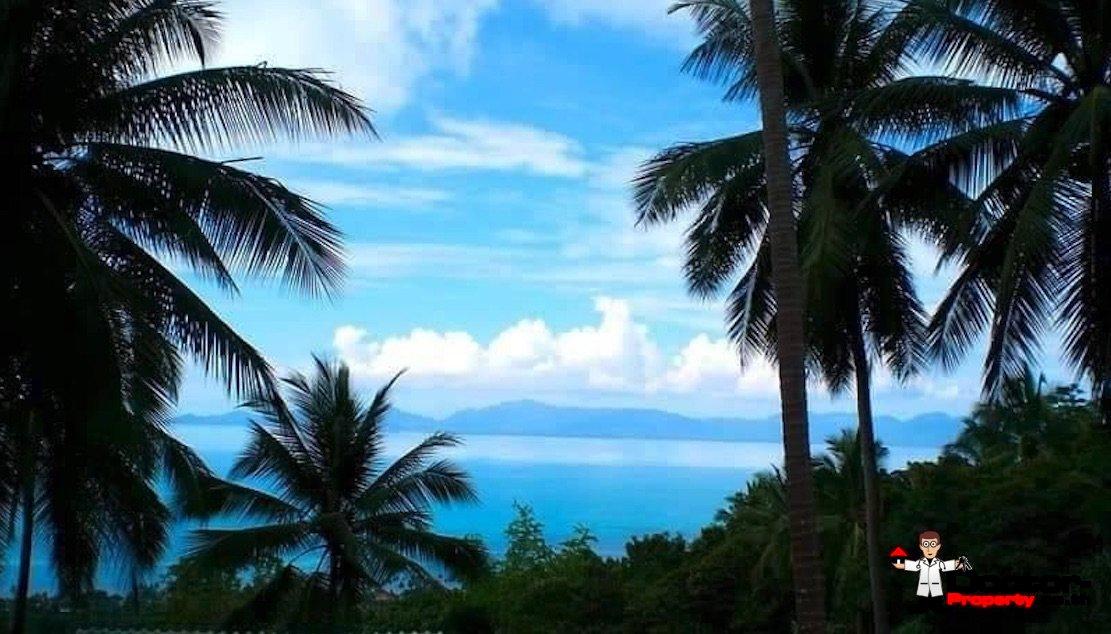 7 Rai Sea View Land - Bang Por - Koh Samui - for sale 3