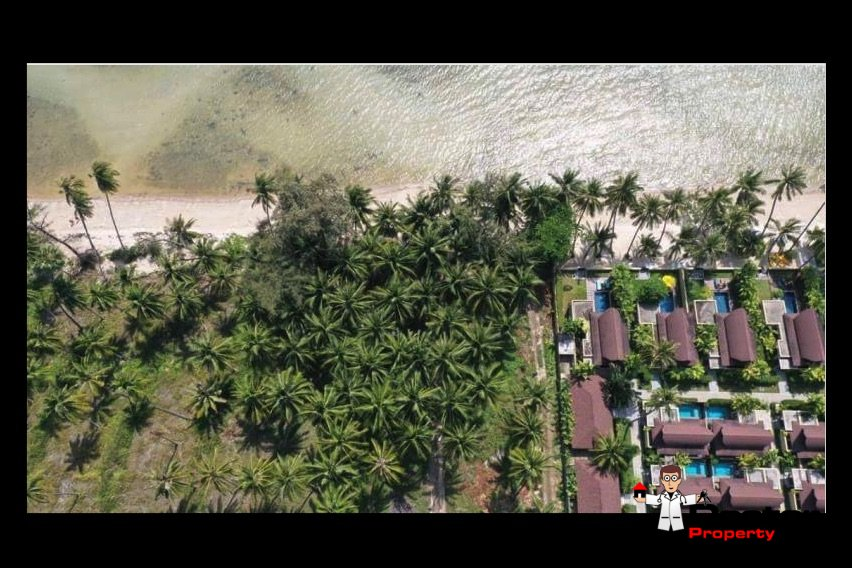3 Rai Beachfront Land - Bang Makham - Koh Samui - for sale 4