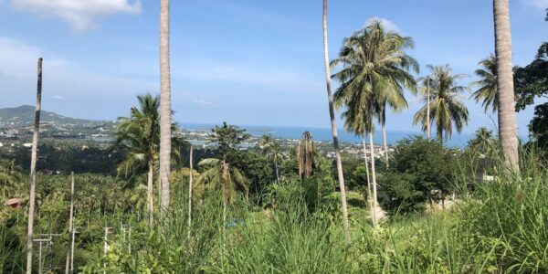 Amazing Sea View Land (1-13 Plots) - Chaweng - Koh Samui - for sale