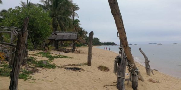 4 Rai Beachfront Land - Mae Nam - Koh Samui - for sale