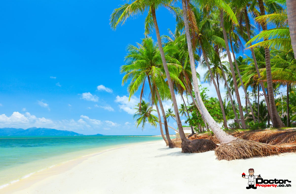 New 4 Bedroom House, next to Beach in Ban Tai, Koh Samui - For Sale