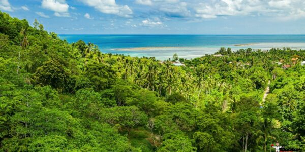 Sea View Land - Hua Thanon, Koh Samui - For Sale