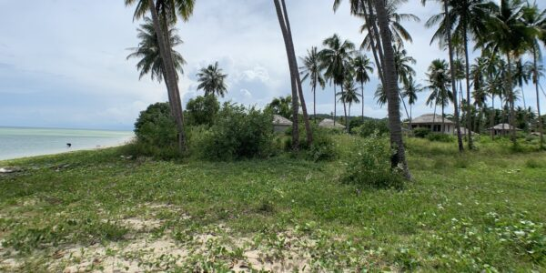 Great Beachfront Land in Hua Thanon, Koh Samui - For Sale