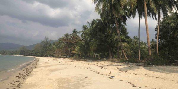 Fantastic Beachfront Land 1,5 - 6 Rai - Lipa Noi - Koh Samui - for sale